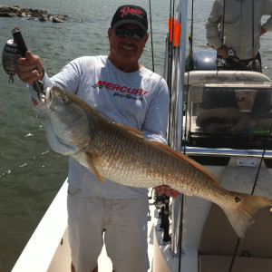 Venice fishing gallery southeast charters for Louisiana fishing license online