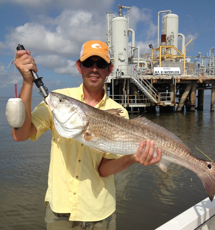 Venice fishing charters southeast charters for Venice fishing charters